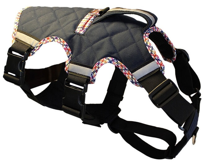 newburry paws large dog harness