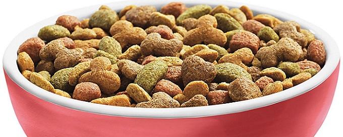 a bowl of Beneful dog food