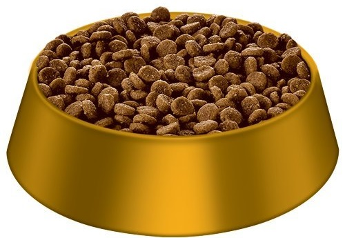 a small golden bowl of Hill's dry puppy food