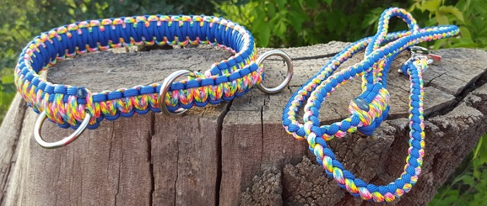 a colorful dog collar next to a dog leash on a log