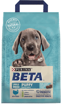 purina beta large breed puppy food with turkey