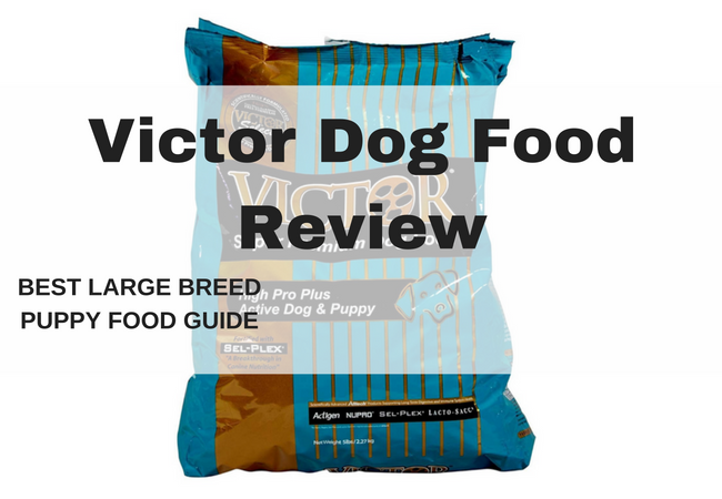 victor dog food-Victor dog food pack