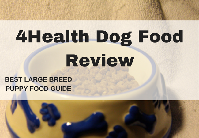 4health dog food- Dog food put in the dog bowl